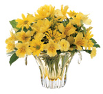 Brighten spirits with flowers for your office