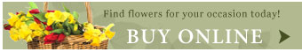 Buy online flowers from Meme's Florist